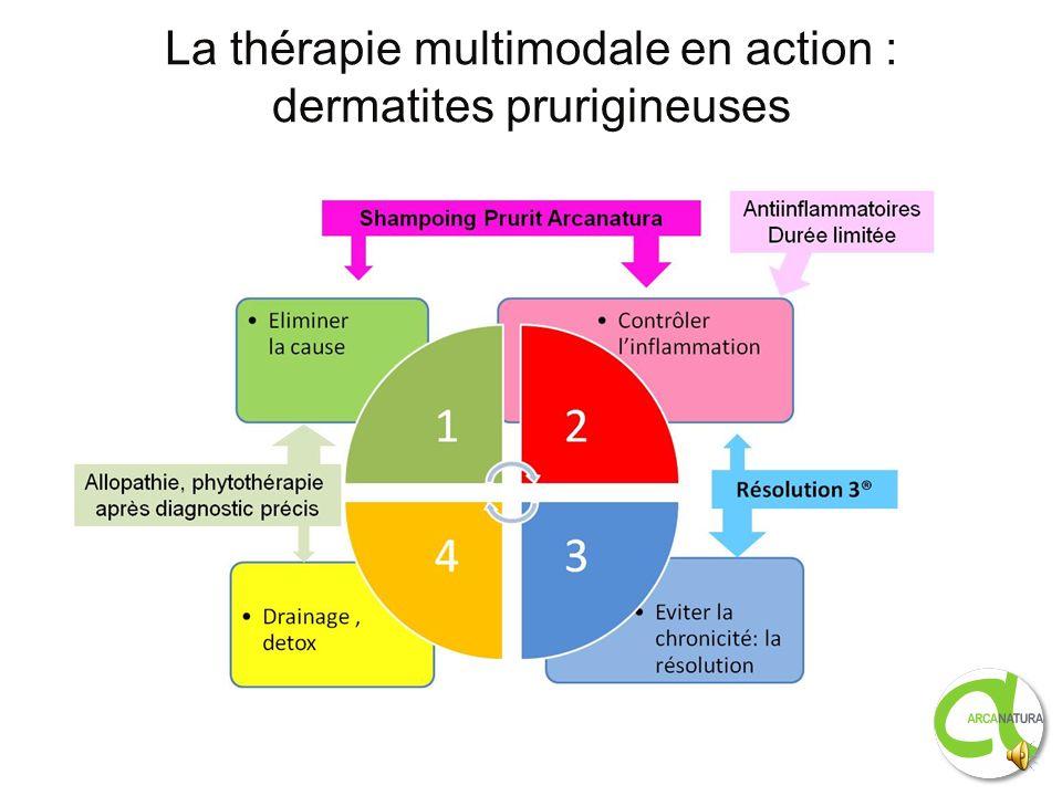La thérapie multimodale en action : dermatites prurigineuses