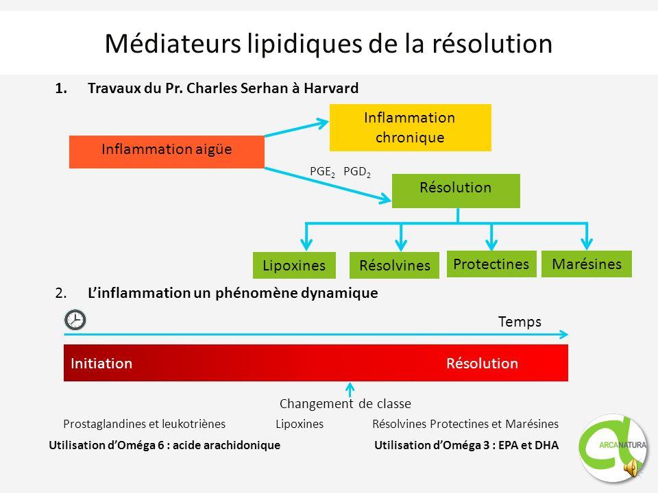 Médiateurs lipidiques de la résolution