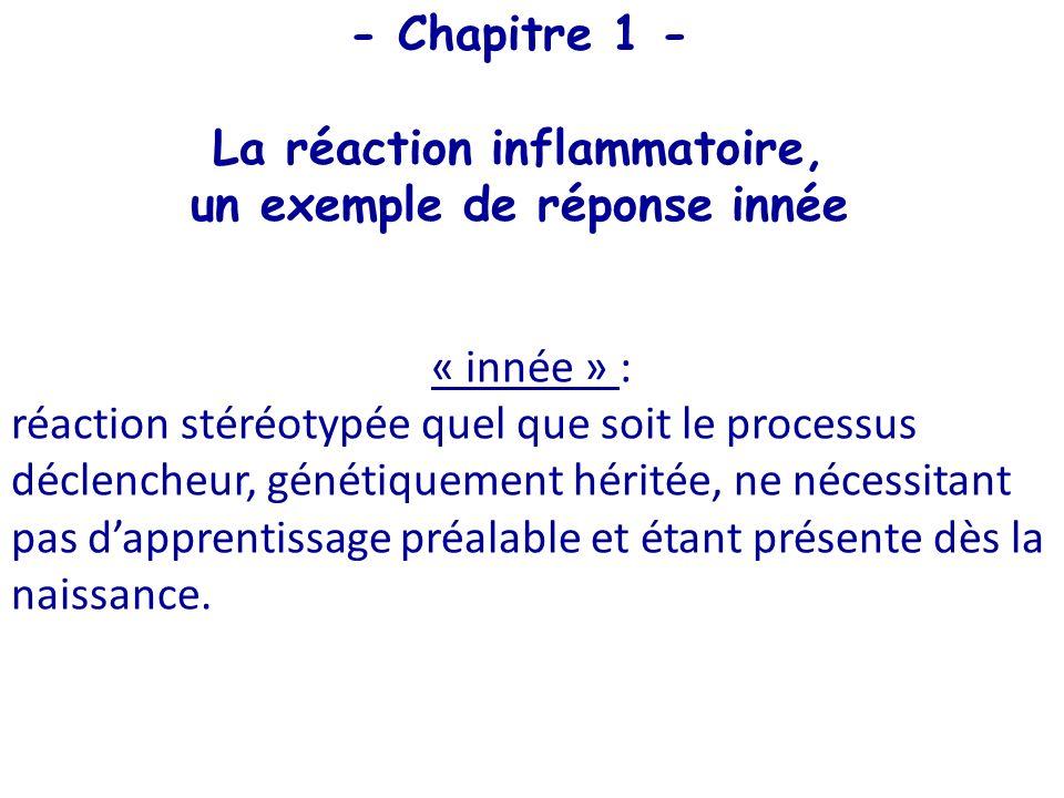 La réaction inflammatoire, un exemple de réponse innée