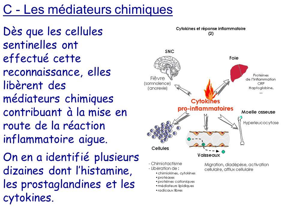C - Les médiateurs chimiques