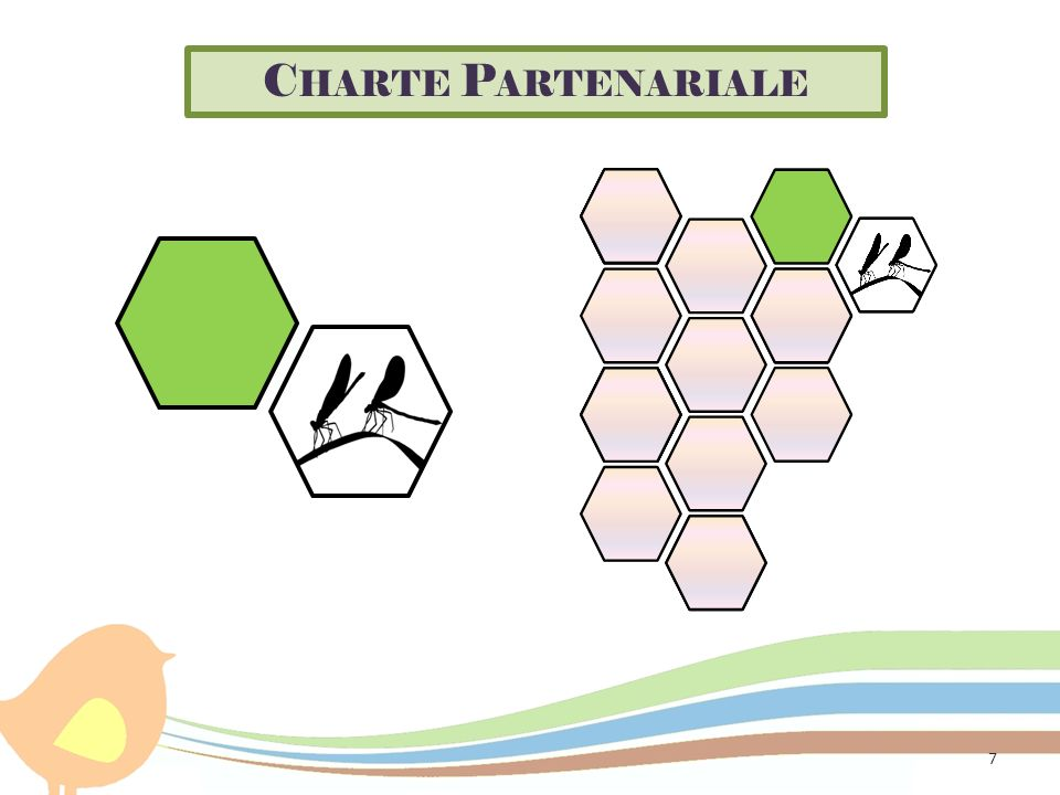 Charte Partenariale