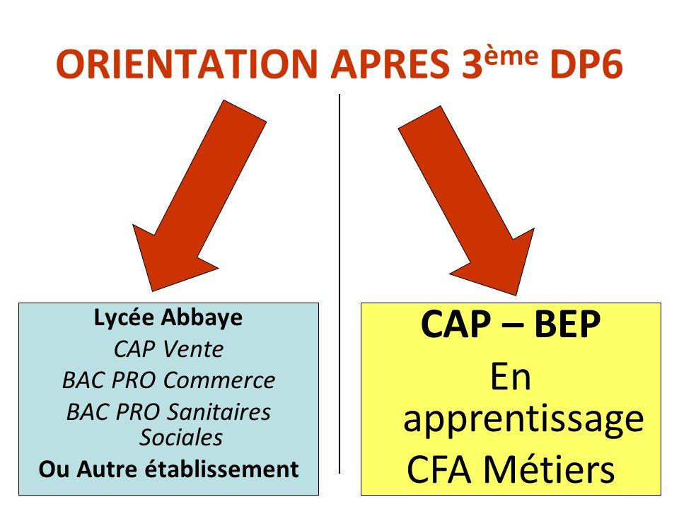 ORIENTATION APRES 3ème DP6