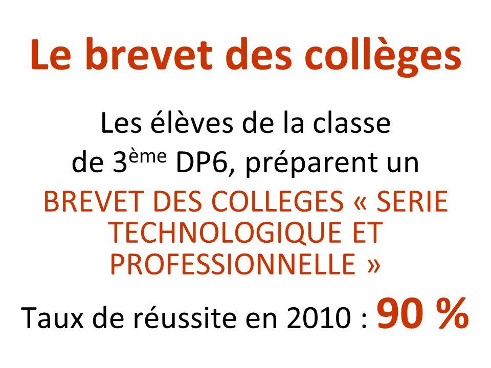 BREVET DES COLLEGES « SERIE TECHNOLOGIQUE ET PROFESSIONNELLE »