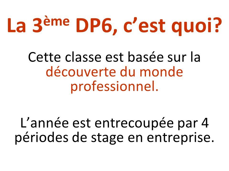 La 3ème DP6, c'est quoi Cette classe est basée sur la découverte du monde professionnel.