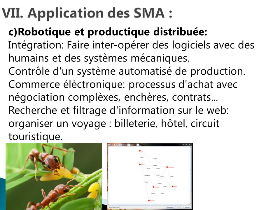 VII. Application des SMA :