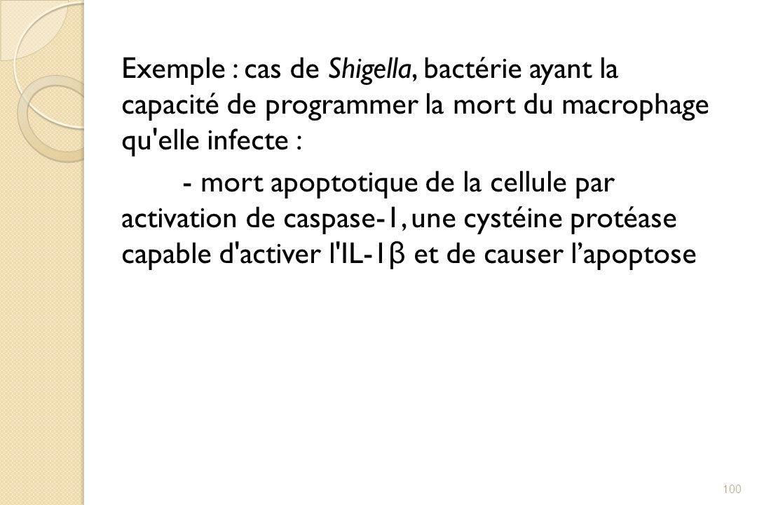 Exemple : cas de Shigella, bactérie ayant la capacité de programmer la mort du macrophage qu elle infecte : - mort apoptotique de la cellule par activation de caspase-1, une cystéine protéase capable d activer l IL-1β et de causer l'apoptose