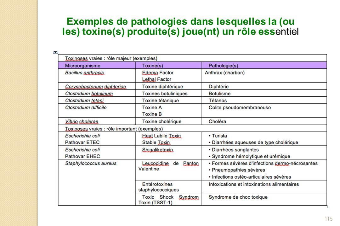 Exemples de pathologies dans lesquelles la (ou les) toxine(s) produite(s) joue(nt) un rôle essentiel