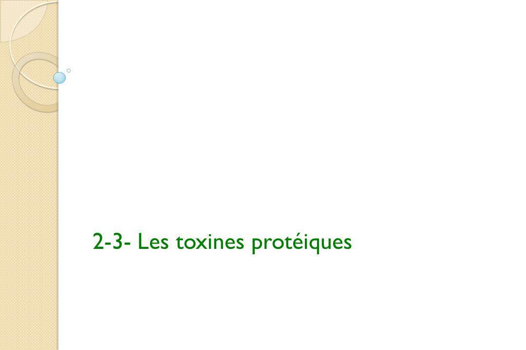 2-3- Les toxines protéiques