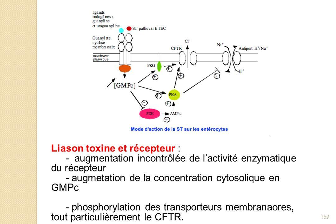 Liason toxine et récepteur :
