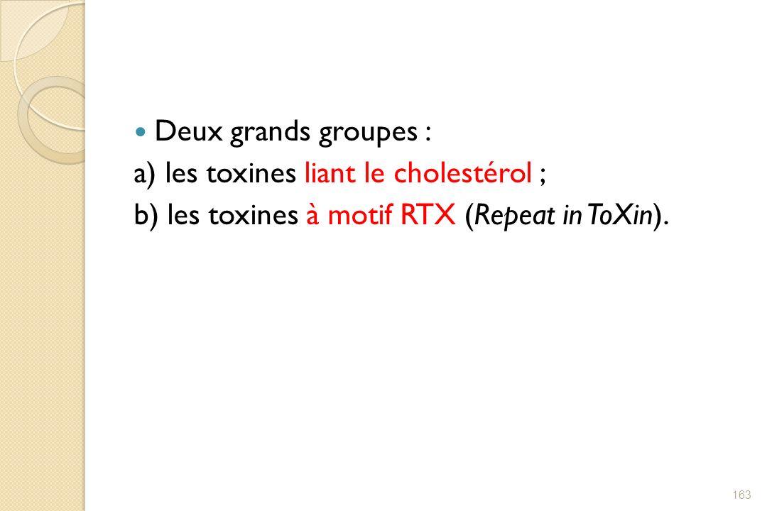 Deux grands groupes :a) les toxines liant le cholestérol ; b) les toxines à motif RTX (Repeat in ToXin).