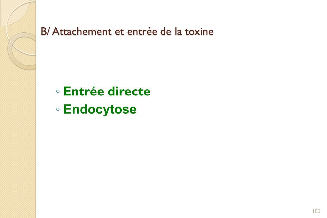 B/ Attachement et entrée de la toxine