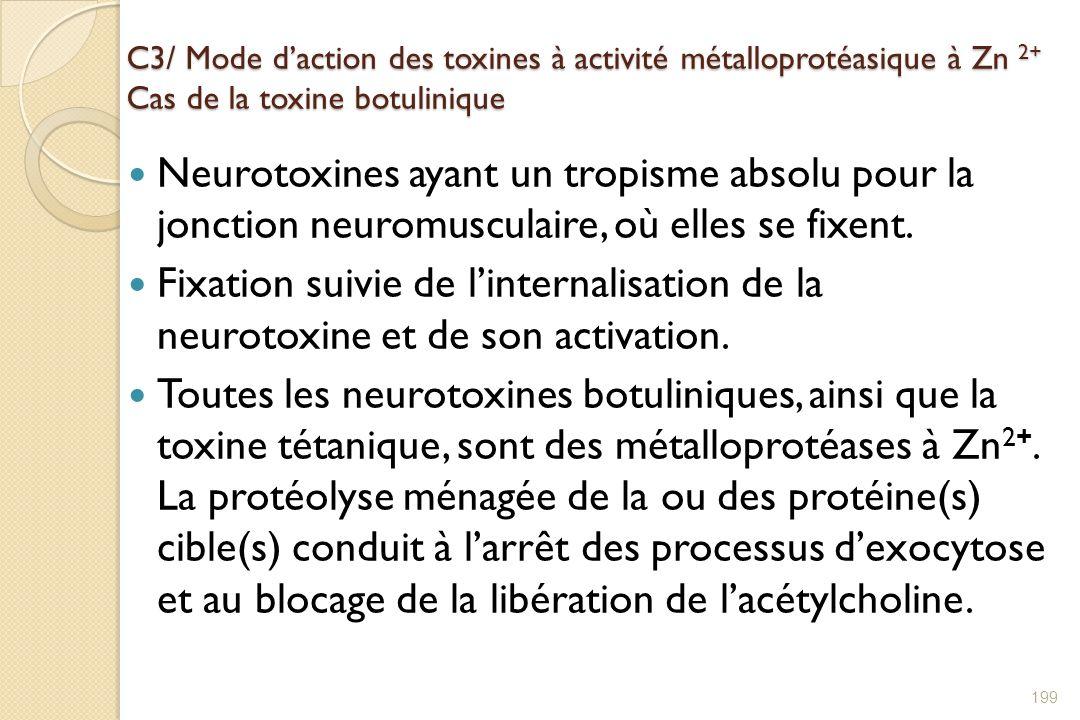 C3/ Mode d'action des toxines à activité métalloprotéasique à Zn 2+ Cas de la toxine botulinique