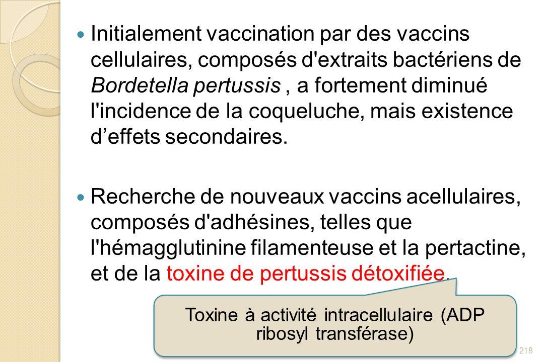 Toxine à activité intracellulaire (ADP ribosyl transférase)