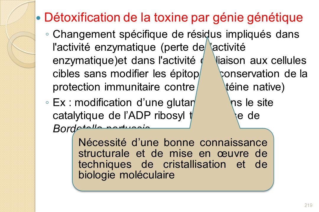 Détoxification de la toxine par génie génétique