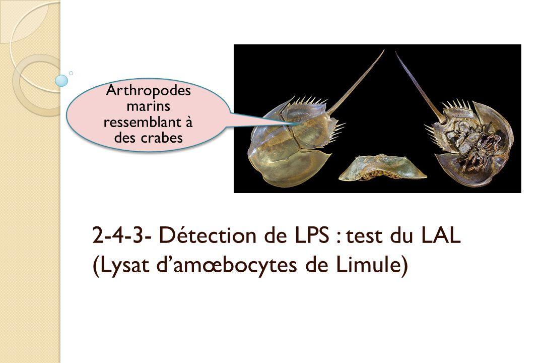 2-4-3- Détection de LPS : test du LAL (Lysat d'amœbocytes de Limule)