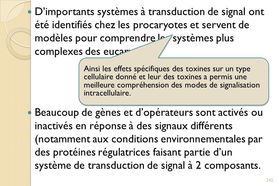 D'importants systèmes à transduction de signal ont été identifiés chez les procaryotes et servent de modèles pour comprendre les systèmes plus complexes des eucaryotes.