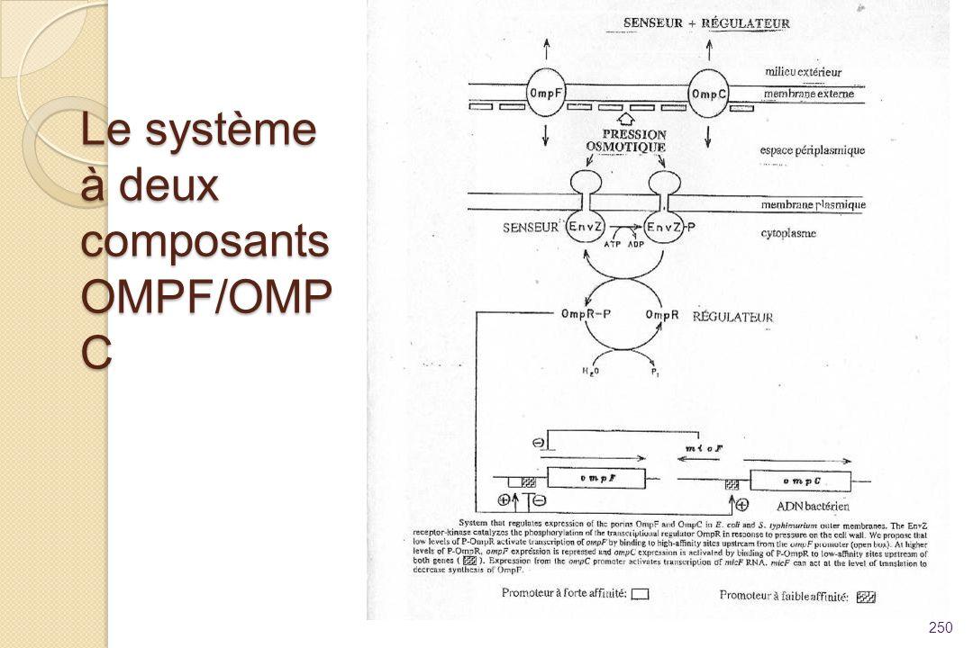 Le système à deux composants OMPF/OMPC