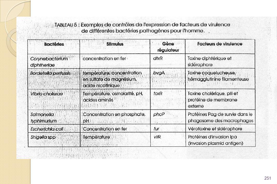 Pr A. Collignon 2005
