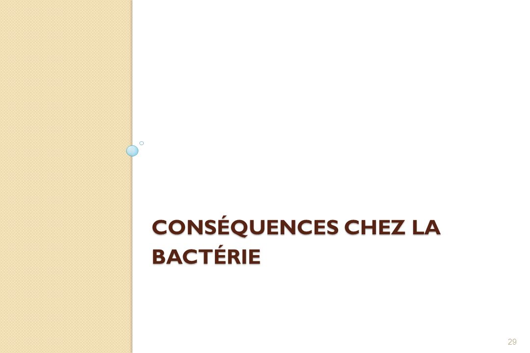 Conséquences chez la bactérie