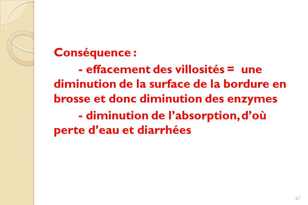 Conséquence :- effacement des villosités = une diminution de la surface de la bordure en brosse et donc diminution des enzymes.