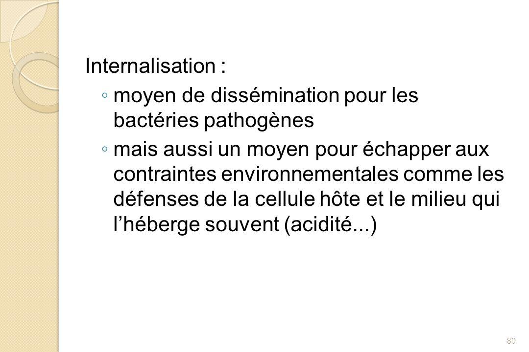 Internalisation :moyen de dissémination pour les bactéries pathogènes.