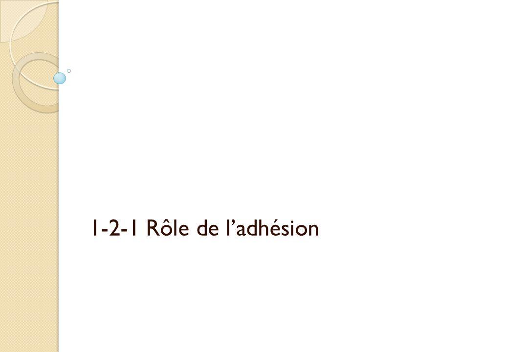 1-2-1 Rôle de l'adhésion