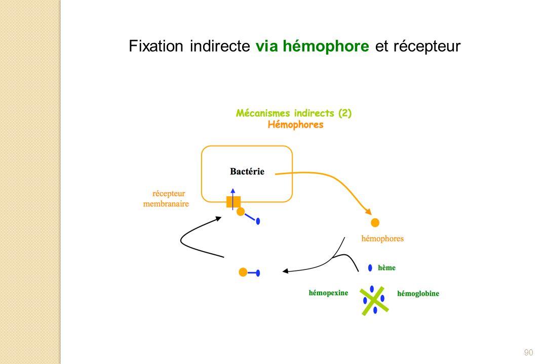 Fixation indirecte via hémophore et récepteur