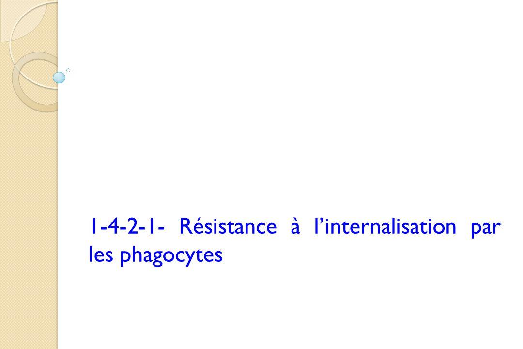 1-4-2-1- Résistance à l'internalisation par les phagocytes