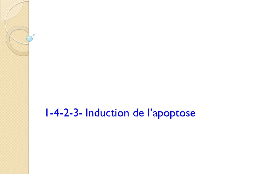 1-4-2-3- Induction de l'apoptose