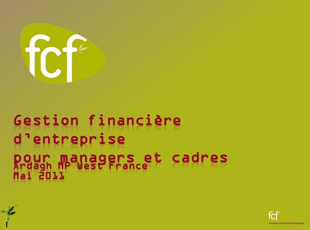 Gestion financière d'entreprise pour managers et cadres
