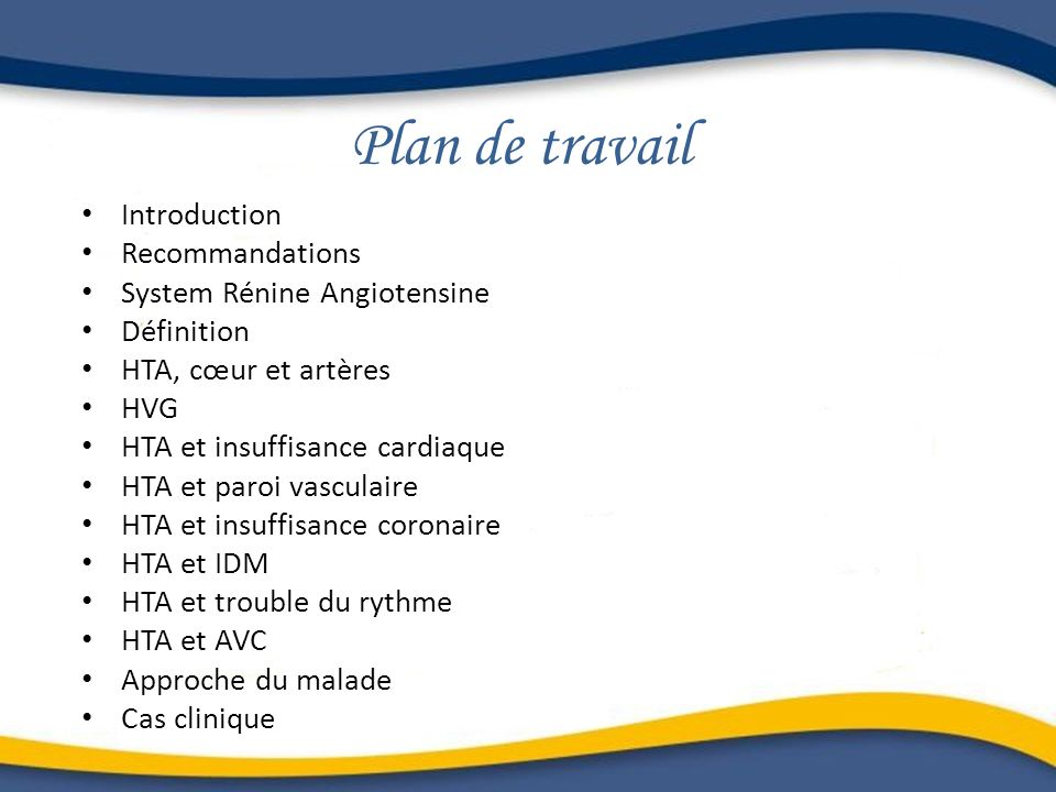 Plan de travail Introduction Recommandations