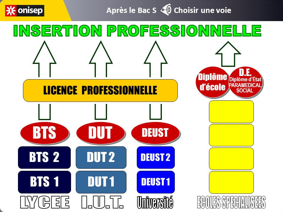 BTS DUT INSERTION PROFESSIONNELLE LYCEE I.U.T. Université