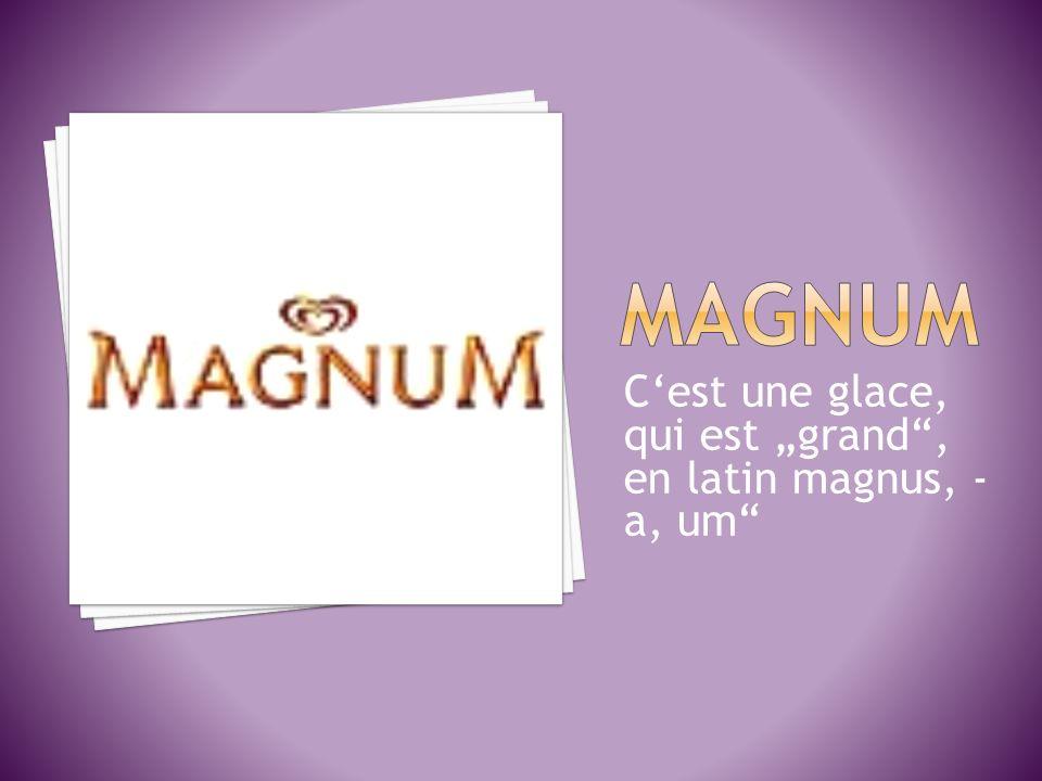 """MAGNUM C'est une glace, qui est """"grand , en latin magnus, -a, um"""