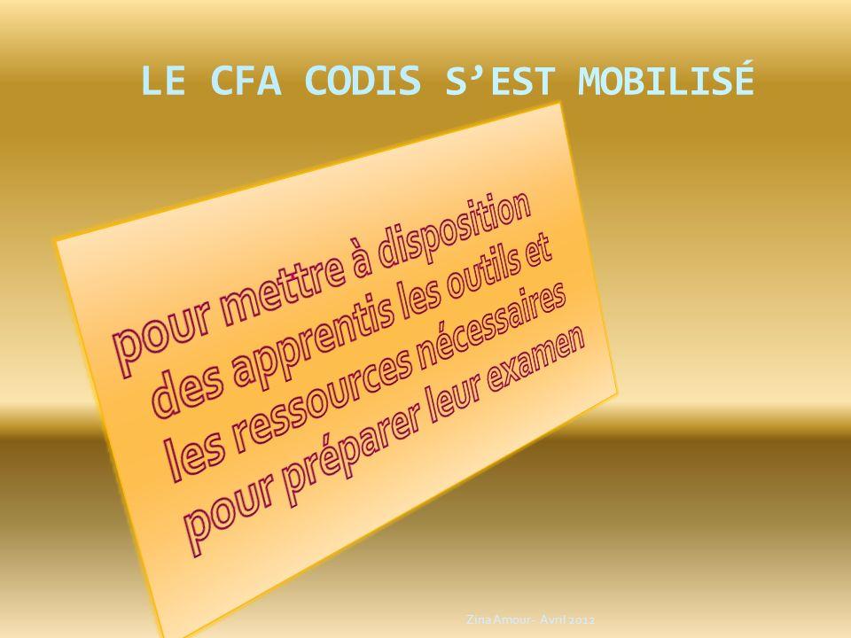 LE CFA CODIS s'est mobilisé