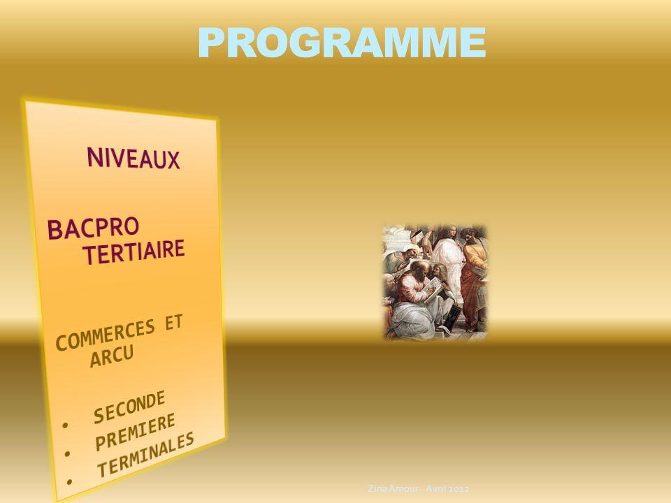 PROGRAMME NIVEAUX BACPRO TERTIAIRE COMMERCES ET ARCU SECONDE PREMIERE