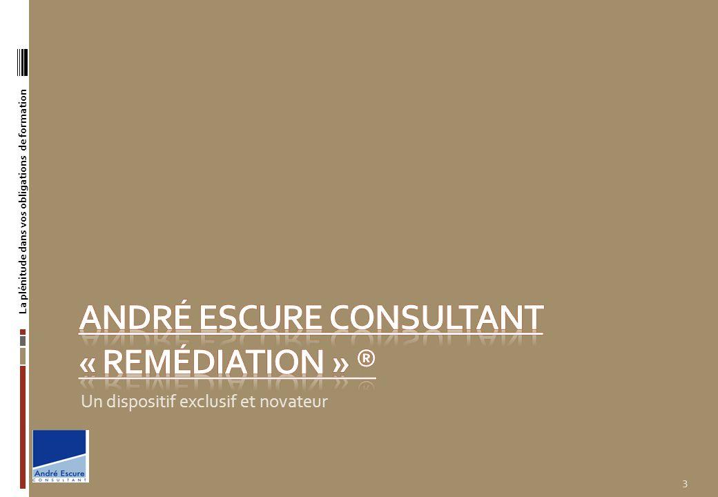 André ESCURE Consultant « remédiation » ®