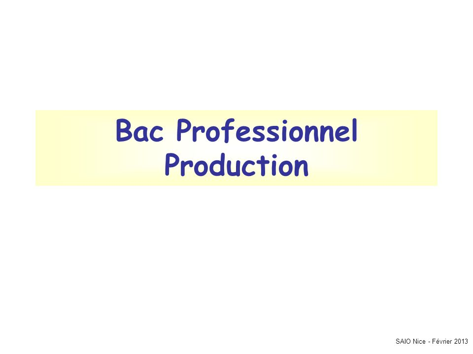 Bac Professionnel Production