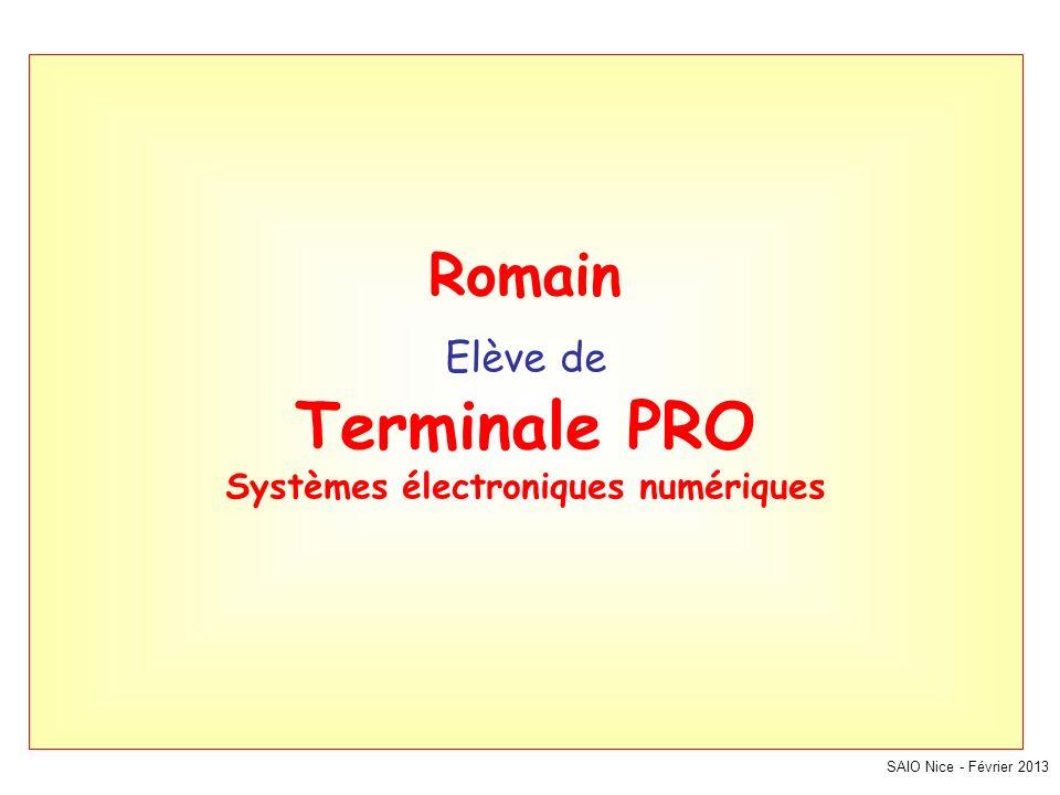 Romain Elève de Terminale PRO Systèmes électroniques numériques