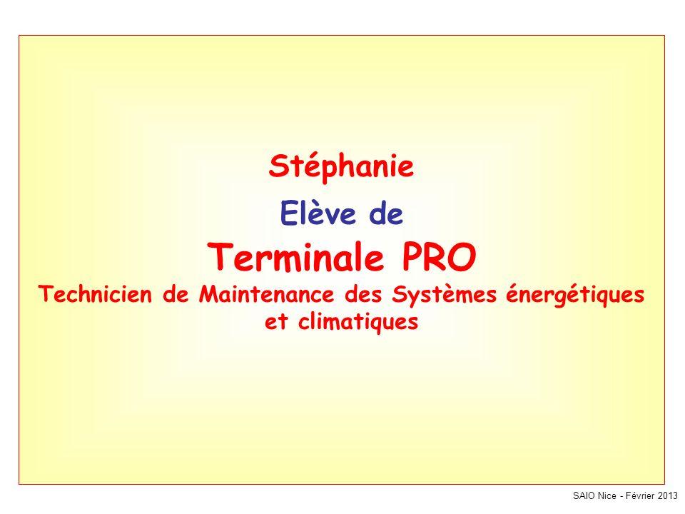 Stéphanie Elève de Terminale PRO Technicien de Maintenance des Systèmes énergétiques et climatiques