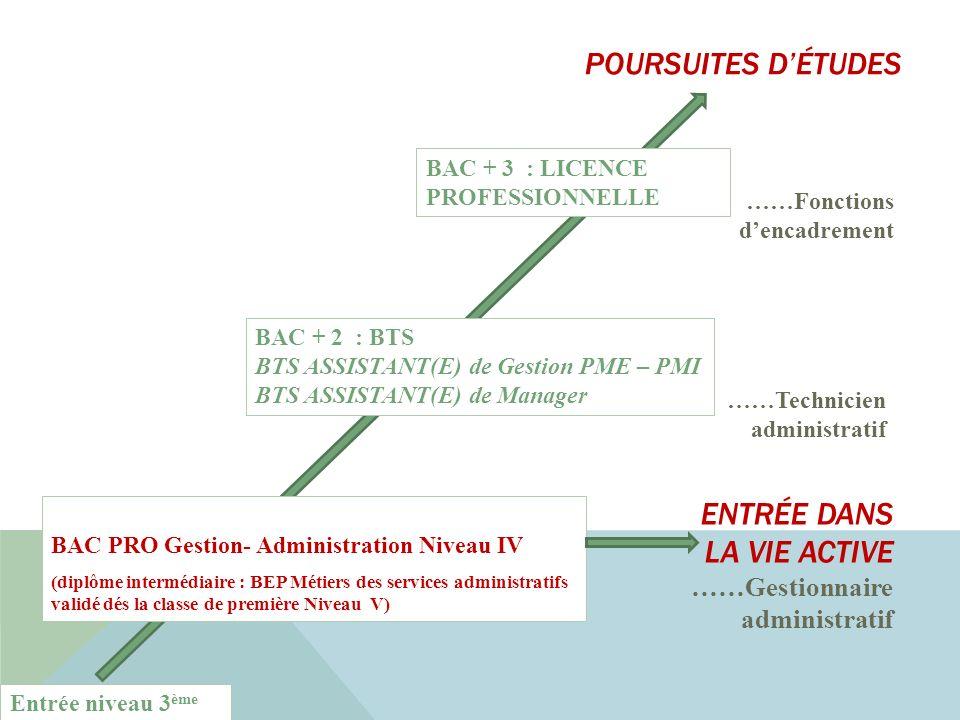 POURSUITES D'ÉTUDES ENTRÉE DANS LA VIE ACTIVE