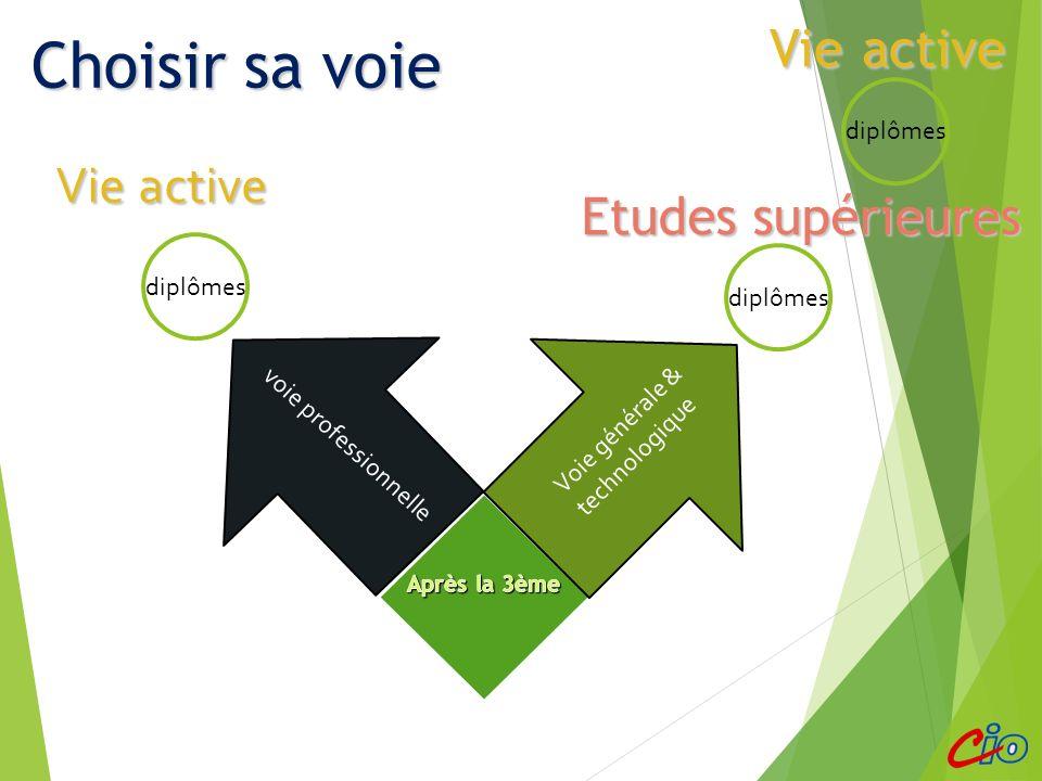 Choisir sa voie Vie active Vie active Etudes supérieures diplômes