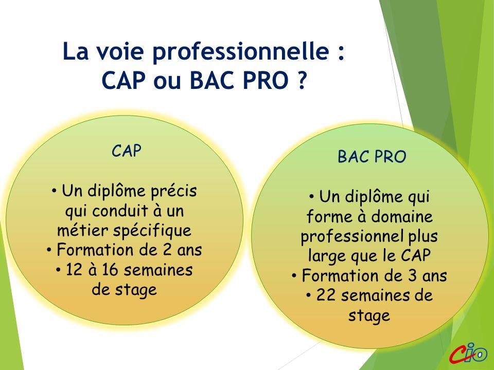 La voie professionnelle : CAP ou BAC PRO