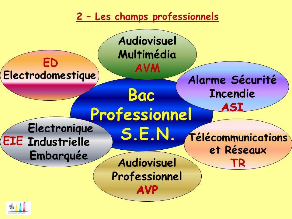 Bac Professionnel S.E.N. Audiovisuel Multimédia AVM ED Alarme Sécurité