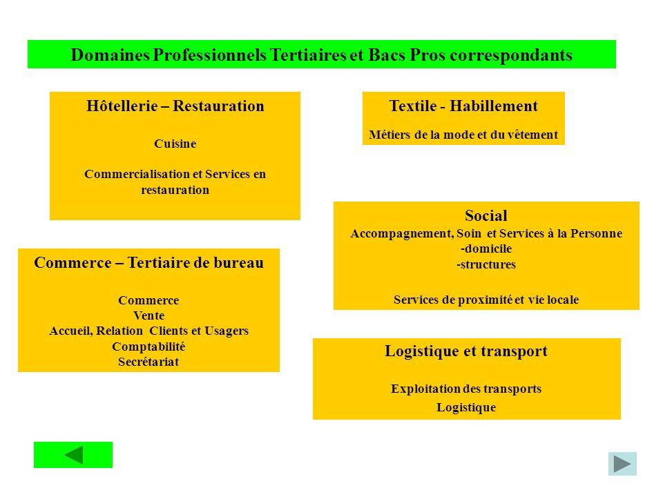 Domaines Professionnels Tertiaires et Bacs Pros correspondants