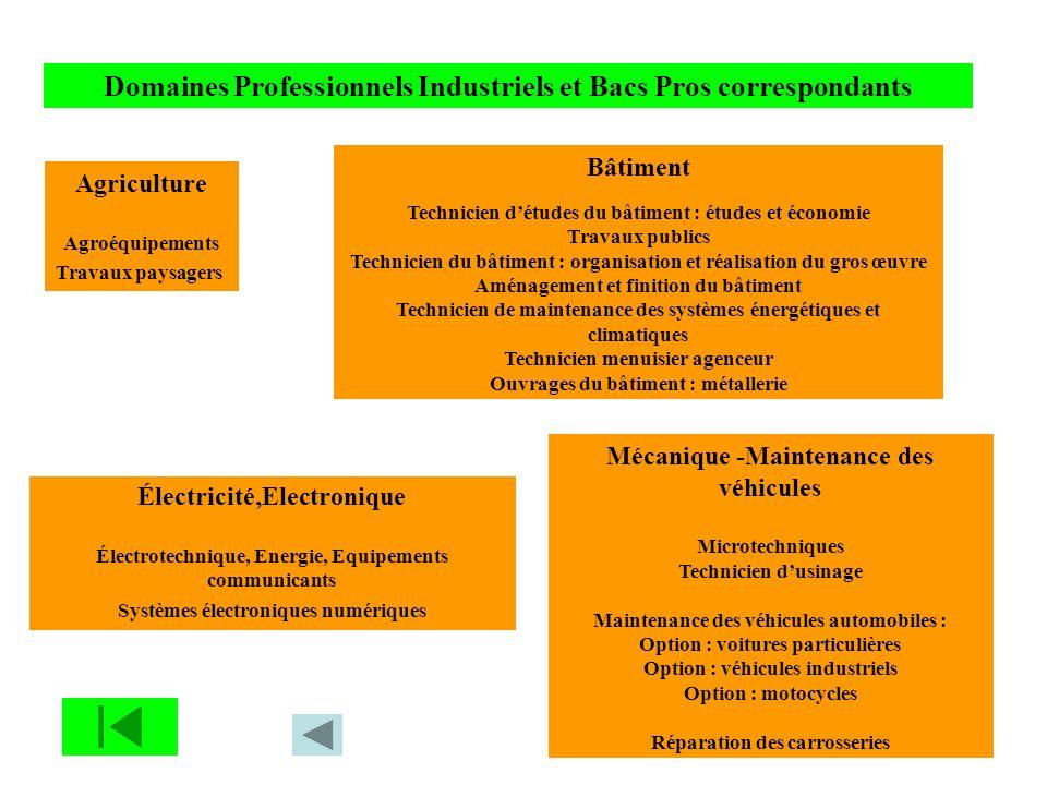 Domaines Professionnels Industriels et Bacs Pros correspondants