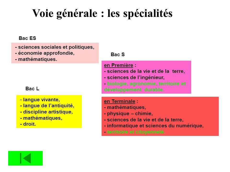 Voie générale : les spécialités