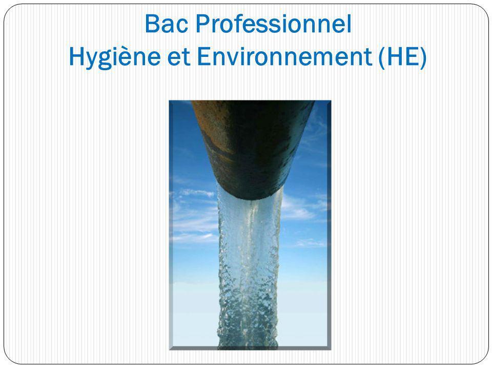 Bac Professionnel Hygiène et Environnement (HE)