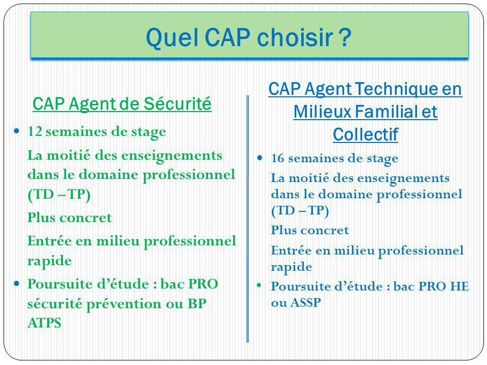 CAP Agent Technique en Milieux Familial et Collectif