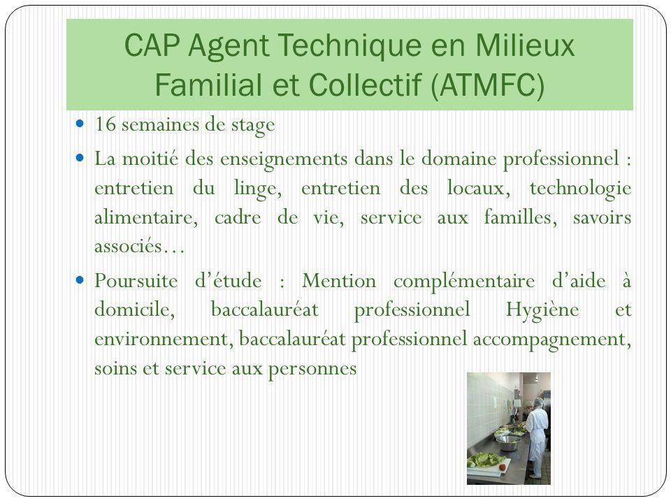 CAP Agent Technique en Milieux Familial et Collectif (ATMFC)
