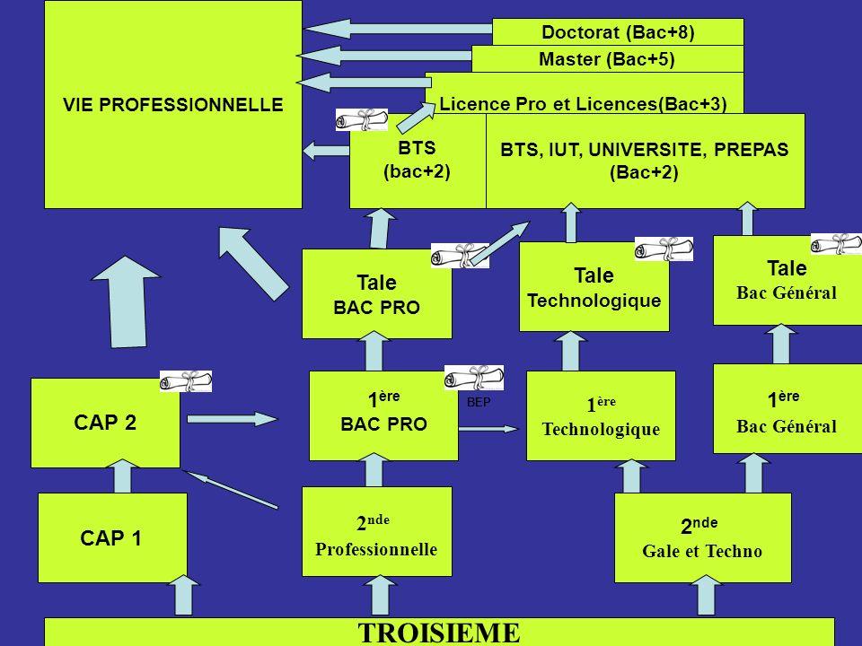 Licence Pro et Licences(Bac+3) BTS, IUT, UNIVERSITE, PREPAS